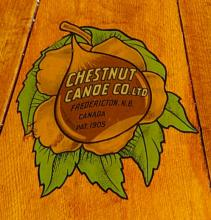 Chestnut decal